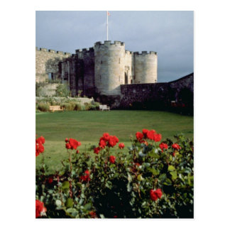 Cartão Postal Castelo de Stirling, flores de Scotland
