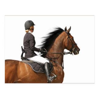 Cartão Postal Cavaleiro & cavalo