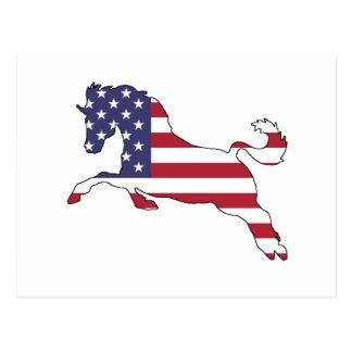 """Cartão Postal Cavalo """"bandeira americana """""""