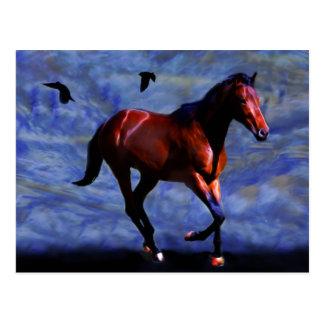 Cartão Postal Cavalo crepuscular