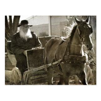 Cartão Postal Cavalo de Amish que é parvo com a língua colada