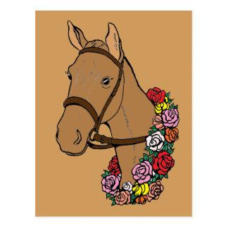 Cartão Postal Cavalo do campeão