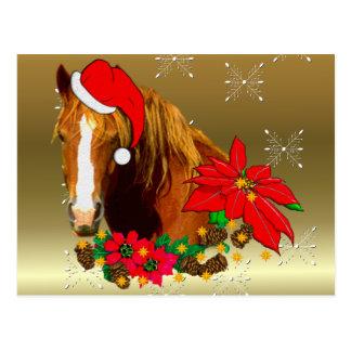 Cartão Postal Cavalo do Natal