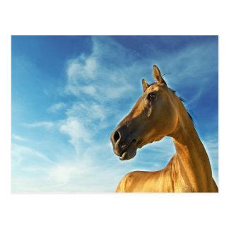 Cartão Postal cavalo dourado de Turkmenistan