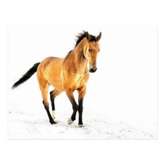 Cartão Postal Cavalo dourado na neve