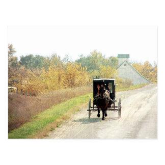 Cartão Postal Cavalo e carrinho de Amish do outono