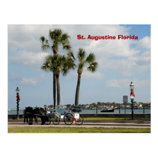 Cartão Postal cavalo e carruagem St Augustine florida