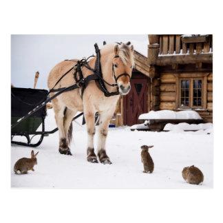 Cartão Postal Cavalo e coelhos da conversa do animal de fazenda