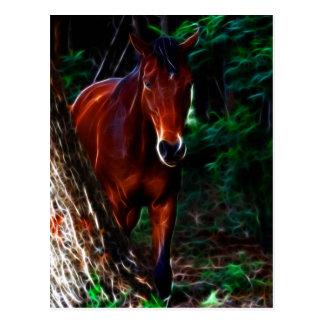 Cartão Postal Cavalo na floresta