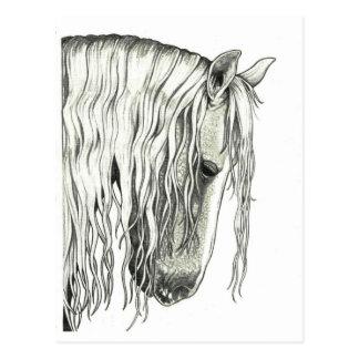 Cartão Postal Cavalo romântico verdadeiro andaluz