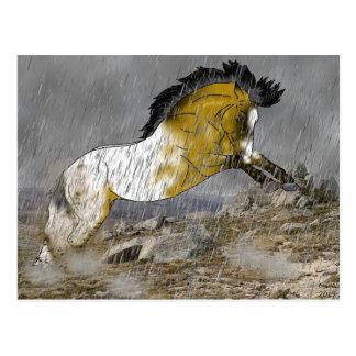 Cartão Postal Cavalo selvagem do Appaloosa do Buckskin