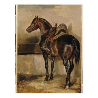 Cartão Postal Cavalo turco em um estábulo por Theodore Gericault