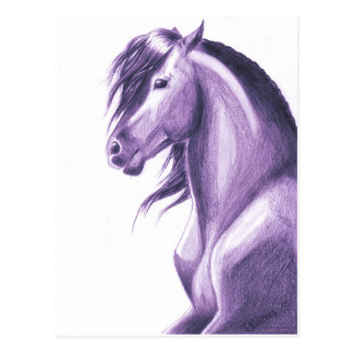 Cartão Postal Cavalo violeta