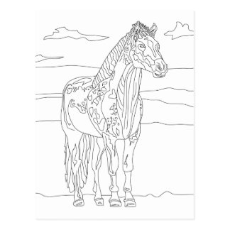 Cartão Postal Cavalo vivo do país