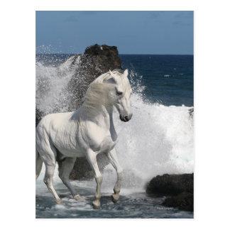 Cartão Postal Cavalos da fantasia: Mares do sul