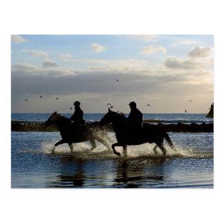 Cartão Postal Cavalos de galope