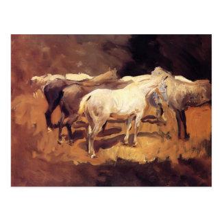 Cartão Postal Cavalos de Sargent- do cantor de John em Palma