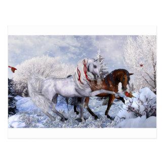 Cartão Postal Cavalos do feriado do Natal