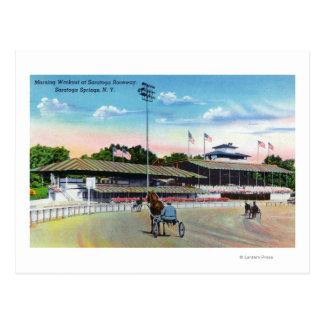 Cartão Postal Cavalos que obtêm um exercício da manhã na trilha