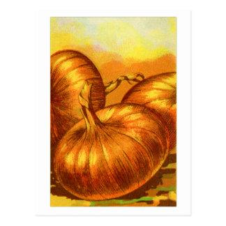 Cartão Postal Cebolas amarelas do francês da herança dos