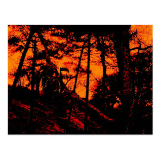 Cartão Postal Ceifador na floresta alaranjada assustador do Lit