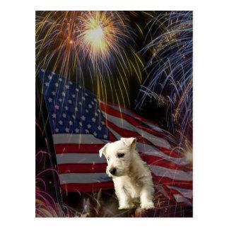 Cartão Postal Celebração bonita dos fogos-de-artifício - design