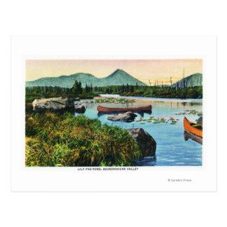 Cartão Postal Cena da lagoa da almofada de lírio do vale de