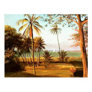 Cartão Postal Cena de Florida por Albert Bierstadt