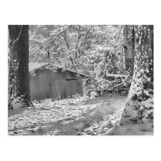 Cartão Postal Cena rural Backlit preto e branco da neve