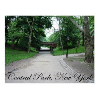 Cartão Postal Central Park, New York 2