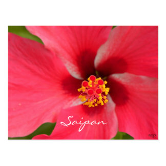 Cartão Postal Centro cor-de-rosa do hibiscus