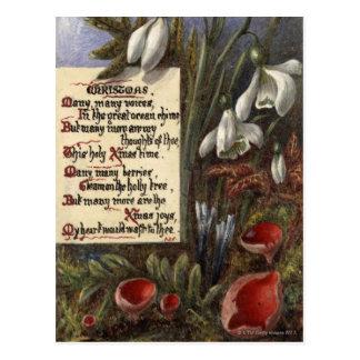 Cartão Postal Cerca de 1890: Snowdrops