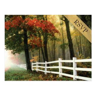 Cartão Postal Cerca de piquete branca das folhas de outono que