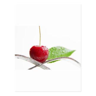 Cartão Postal Cerejas frescas vermelhas gourmet feitiço