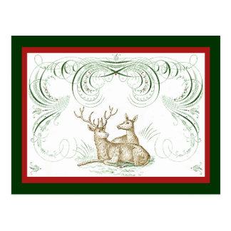 Cartão Postal Cervos do Natal