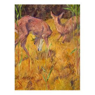 Cartão Postal Cervos no junco por Franz Marc