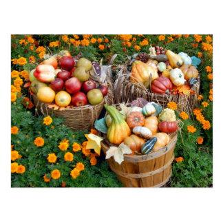 Cartão Postal Cestas da fruta e dos vegetais do outono