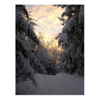 Cartão Postal Céu do inverno