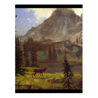 Cartão Postal Chamada do selvagem - Albert Bierstadt