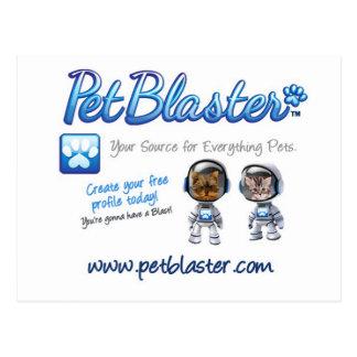 Cartão Postal Chapéus de PetBlaster, t-shirt, canecas, roupa do