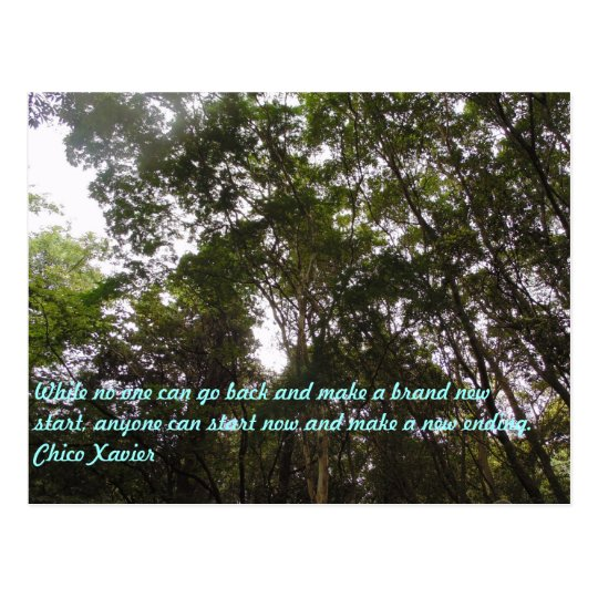 Cartão Postal Chico Xavier Quotes