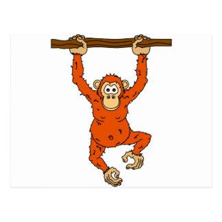 Cartão Postal Chimpanzé de Tongo