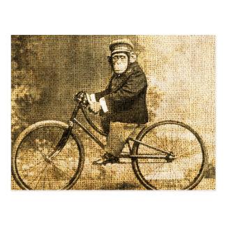Cartão Postal Chimpanzé do vintage em uma bicicleta