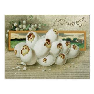 Cartão Postal Choque da flor do ovo do pintinho da páscoa