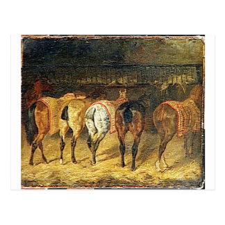 Cartão Postal Cinco cavalos vistos de de trás com croupes