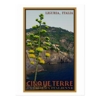 Cartão Postal Cinque Terre - planta de século