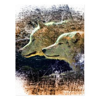Cartão Postal Cinza solitário selvagem do bloco de lobo da