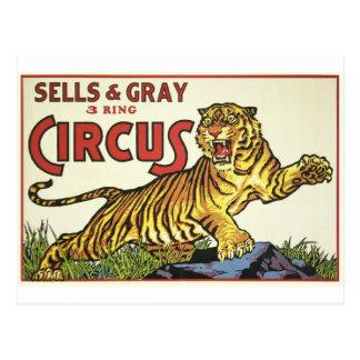 Cartão Postal Circo de 3 anéis - cerca de 1930