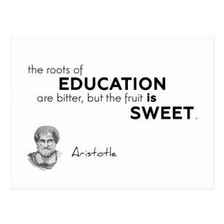 Cartão Postal CITAÇÕES: Aristotle: Raizes da educação