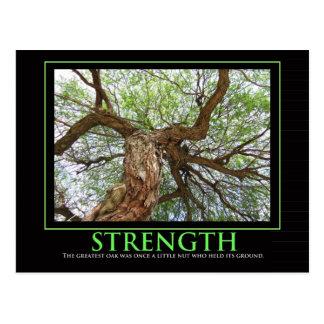 Cartão Postal Citações da força para iluminar anyday
